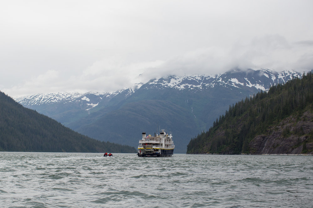 A small group of passengers on a zodiak approaches the Sea Lion in Alaska's Inside Passage.