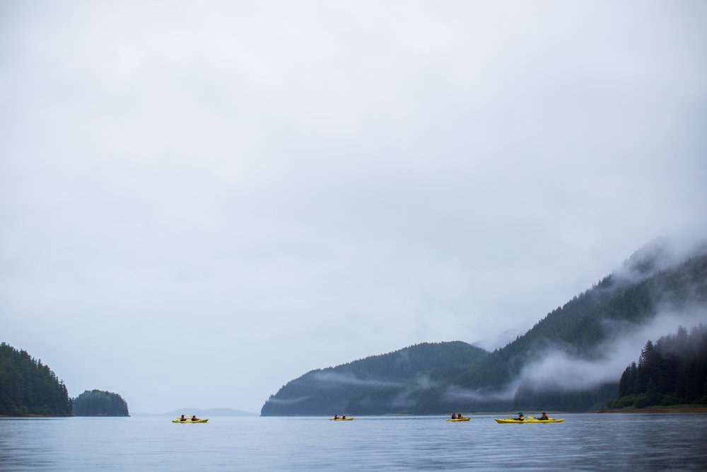 Group of kayakers in Southeast Alaska.