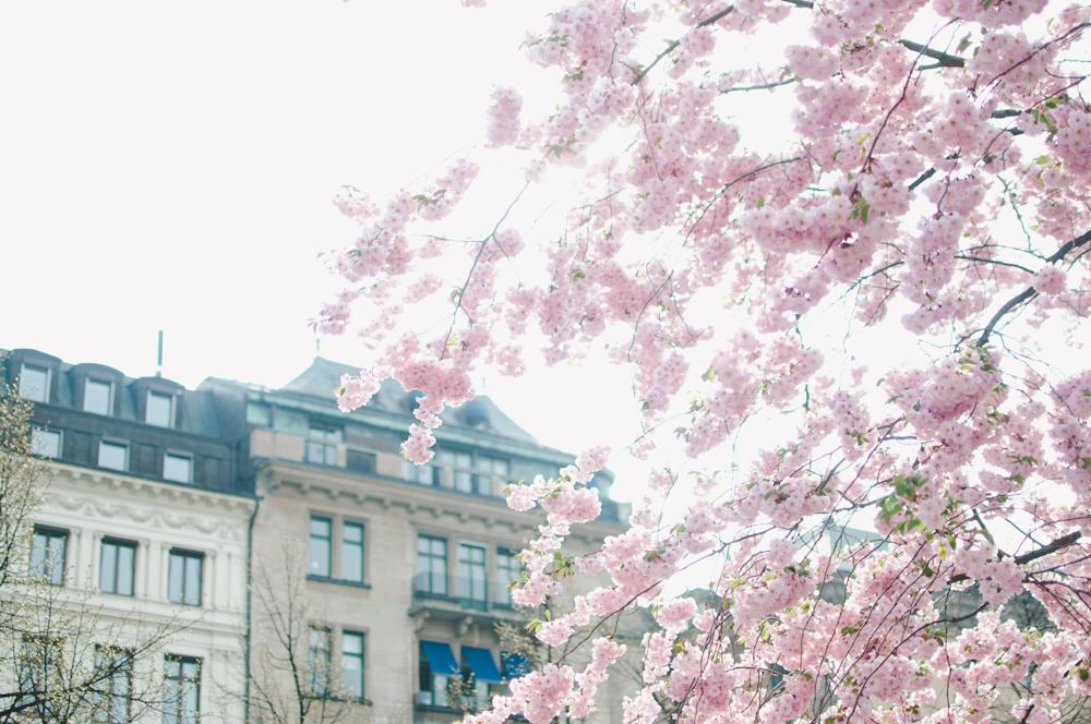 Marta-Vargas_Kungstradgarden_Stockholm_2.jpg