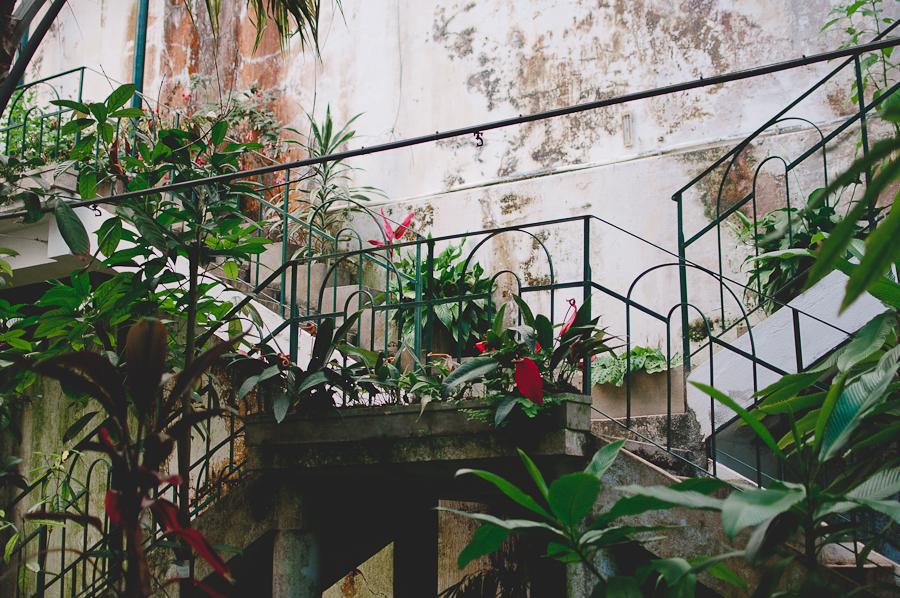 Coimbra-Greenhouse_5.jpg