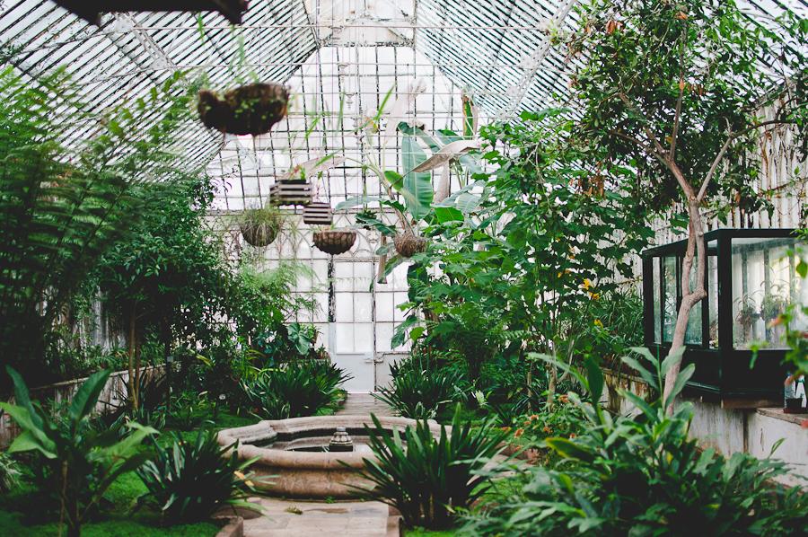 Coimbra-Greenhouse_6.jpg
