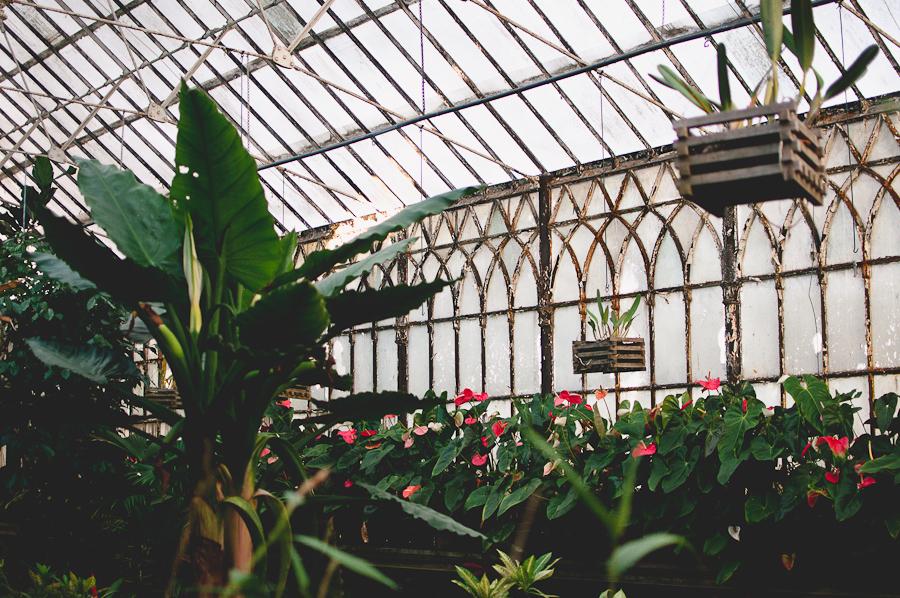 Coimbra-Greenhouse_3.jpg