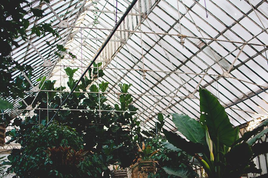 Coimbra-Greenhouse_4.jpg
