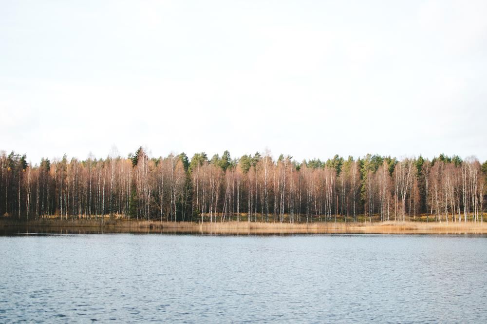 Barkarbacken_Dalarna_MartaVargas-9.jpg