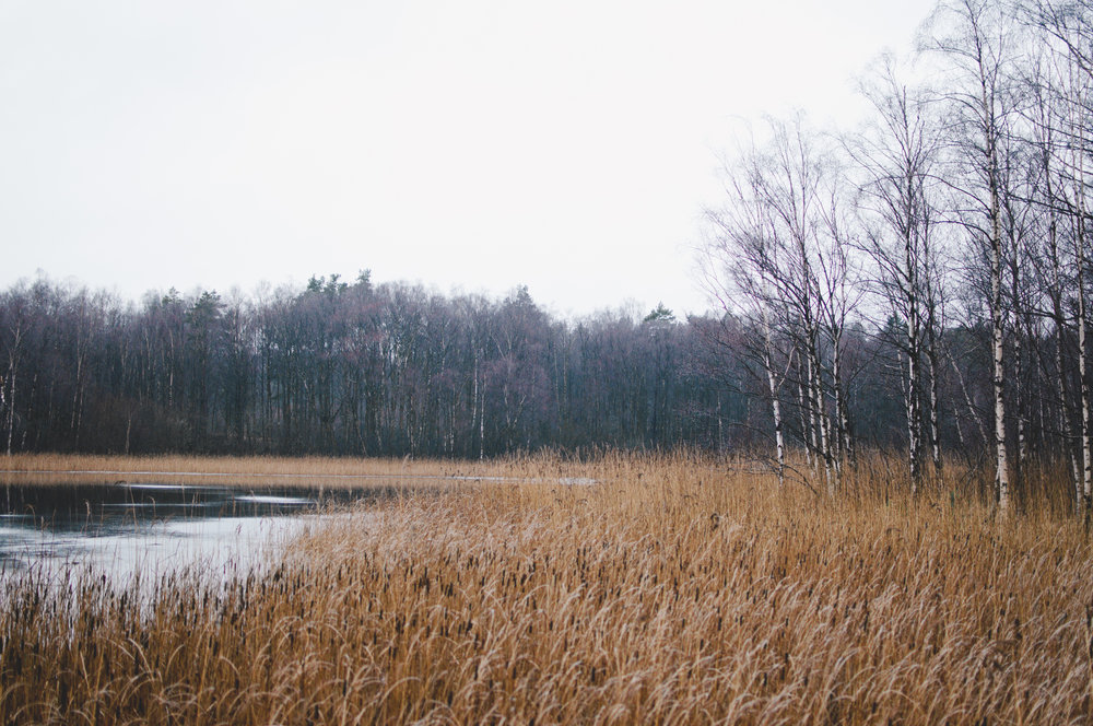 gothenburg-marta-vargas-1.jpg