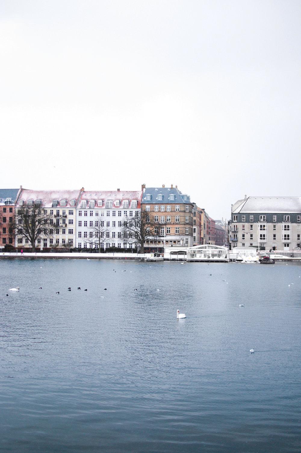 marta-vargas-copenhagen-8.jpg