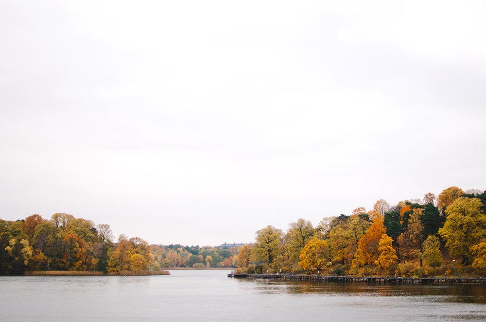 marta-vargas-autumn-stockholm-4334.jpg