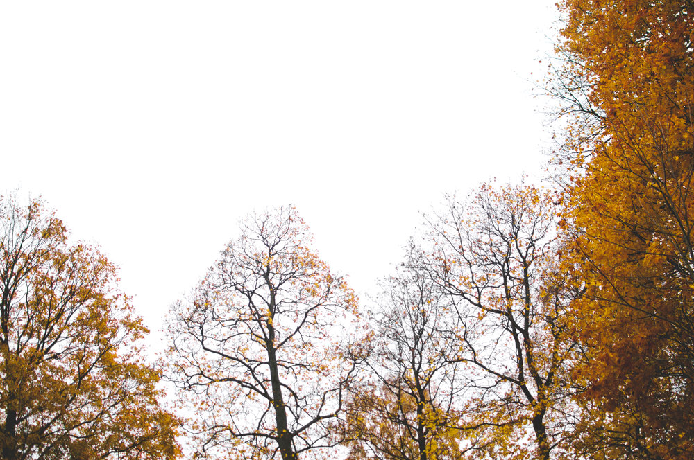 marta-vargas-autumn-stockholm-4390.jpg