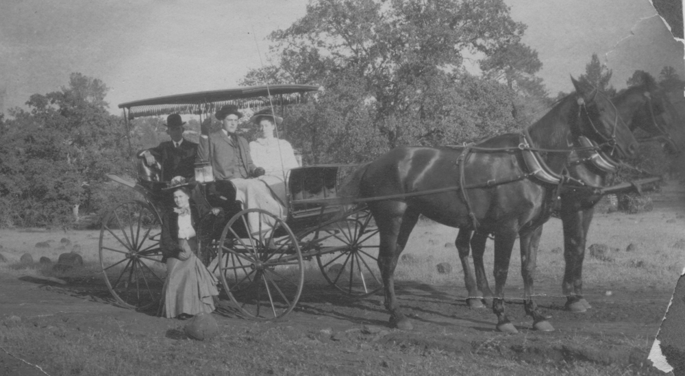 The Fiddyment family carriage circa 1907