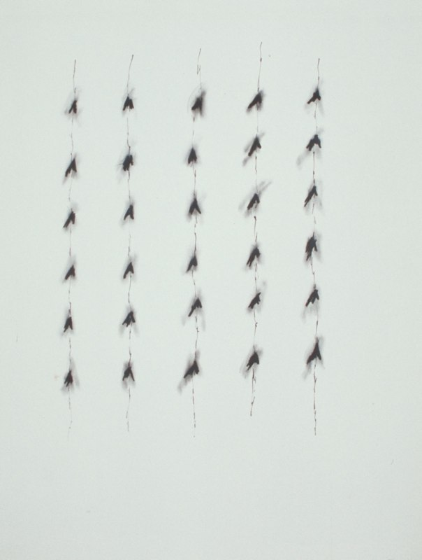 Untitled, 1985, charcoal and ink on paper, 50 x 38.jpg