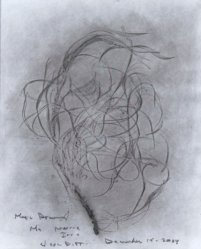 Magic Drawing - My prairie iris, December 15, 2004, GLSP.jpg
