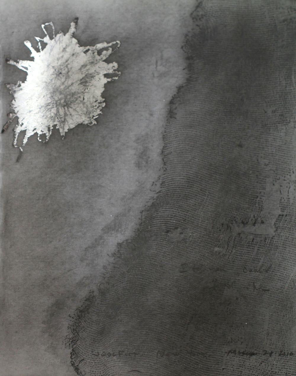 37. 2010.jpg