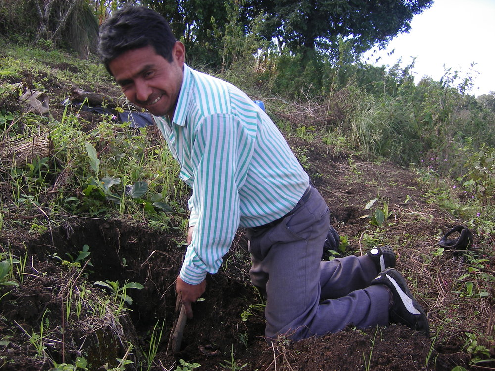 Pictured: Alberto working in his coffee fields.