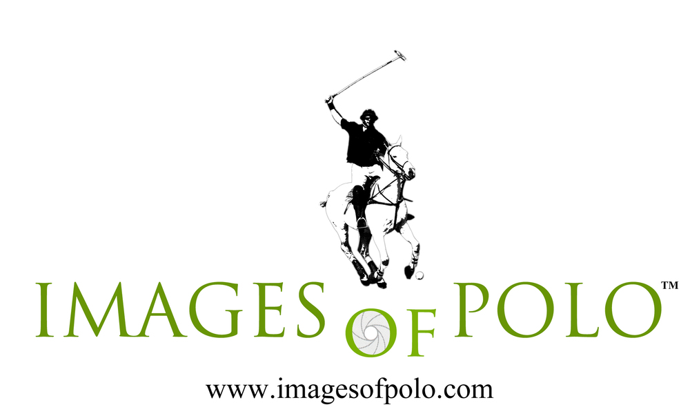 12 Images of Polo Logo.jpg