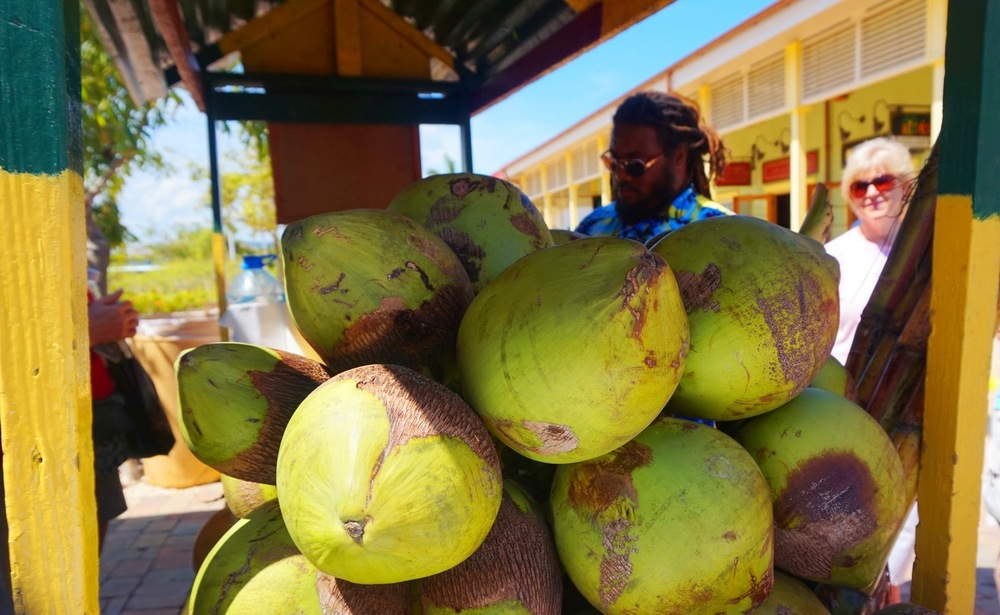 Fresh coconuts at the Falmouth Port