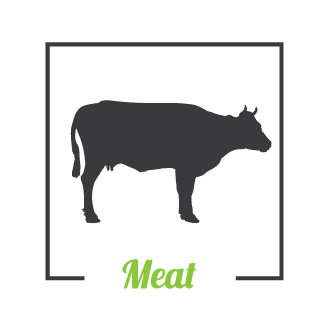 Meat-icon.png