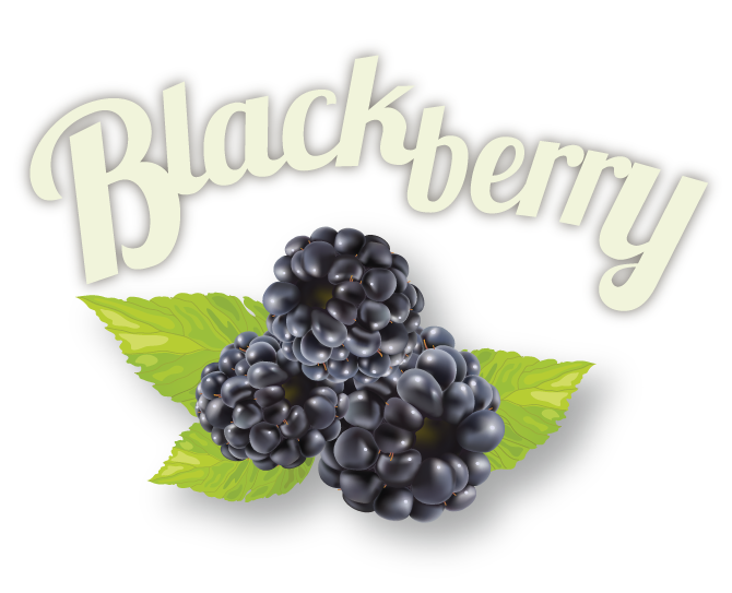 blackberry-01.png