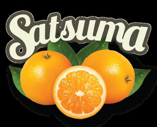 satsuma-01.png