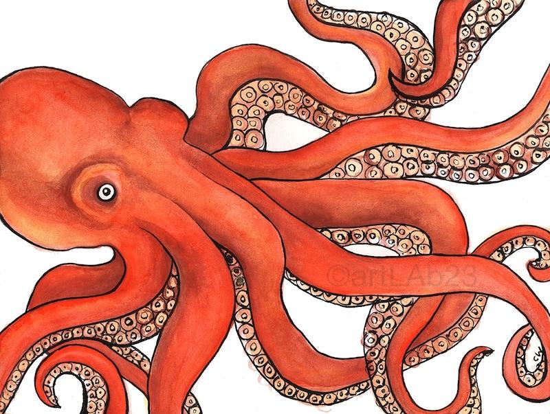 octopus_print.jpg
