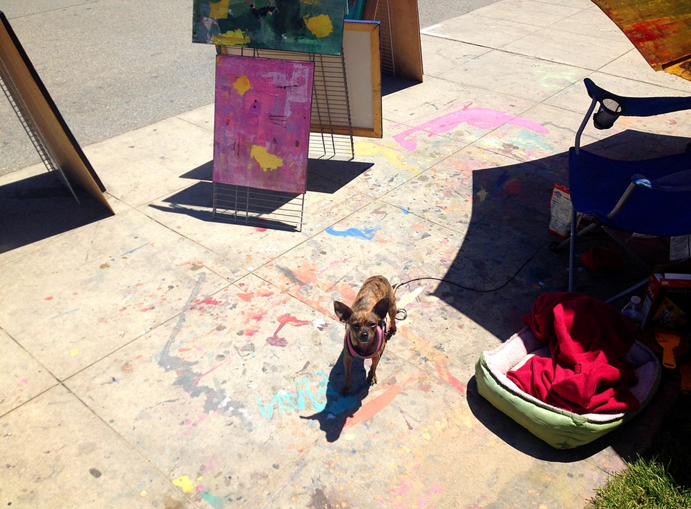 Adorable Ms. Peanut, neighboring abstract artist Lisa's Chihuahua/Italian Greyhound mix