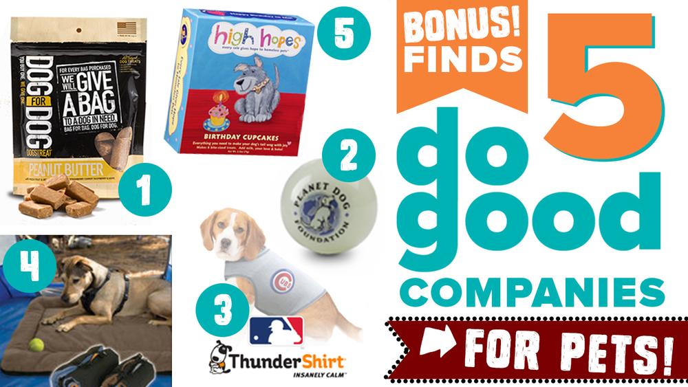 Friday Finds Pets Thumbnail.jpg
