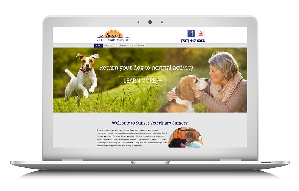 sunsetvetsurgery website