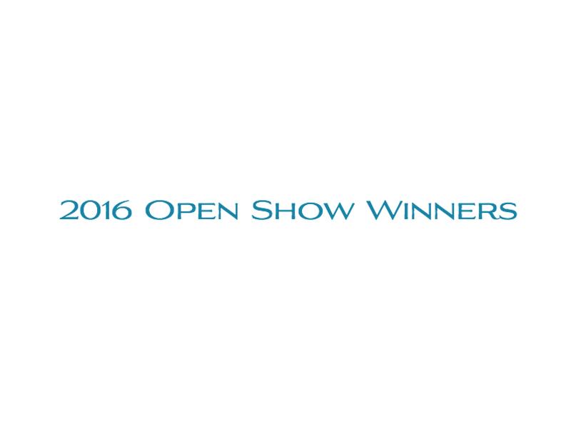 2016-Open-Show-Winners-1.jpg