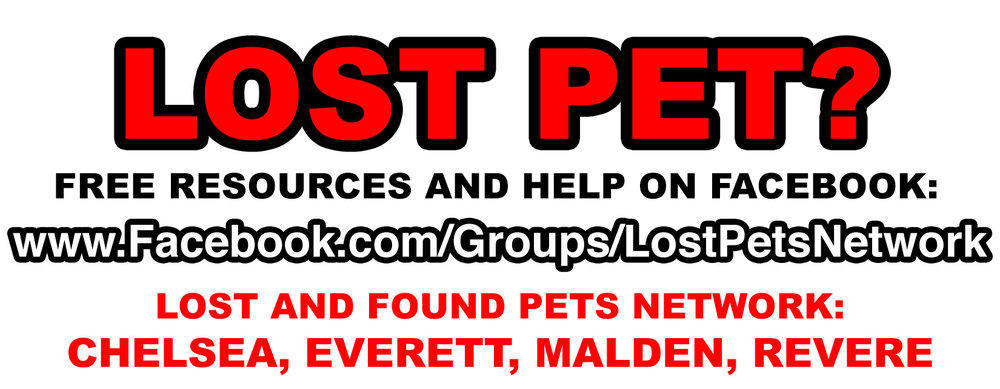 LostPetsNetwork.jpg