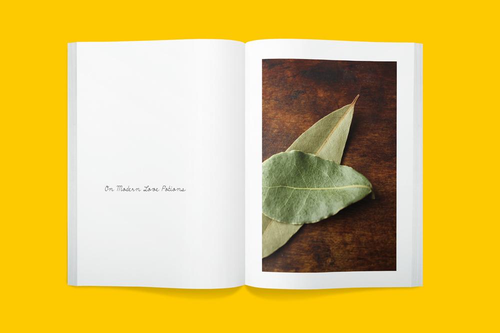 Plus-Book-8001-2014-07-30_12.jpg