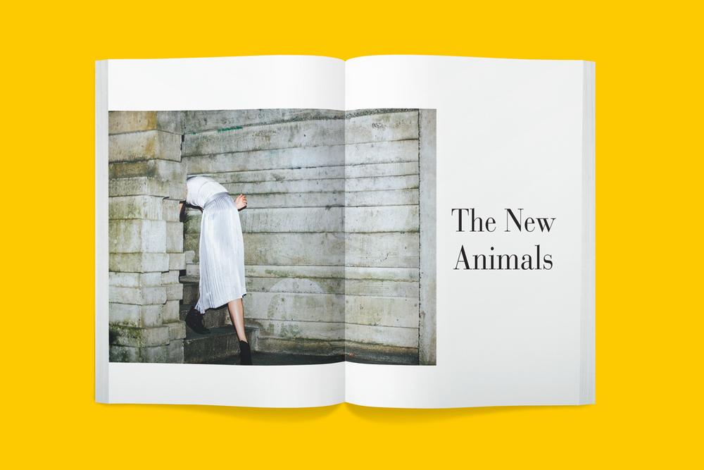 Plus-Book-8001-2014-07-30_31.jpg