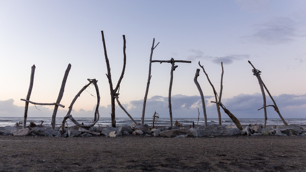 The beach at Hokitika has some cool wooden artworks on it. It seems there was a competition with various categories.