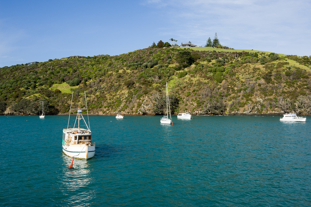 Boats moored in Matiatia Bay, Waiheke Island.