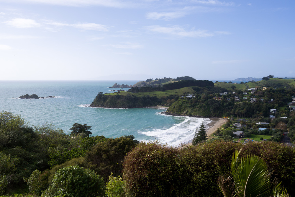 Overlooking Palm Beach, on the northern Waiheke coast.