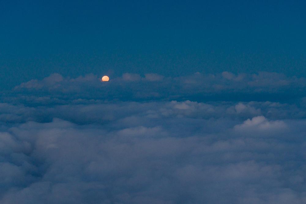 Moon set, early morning.