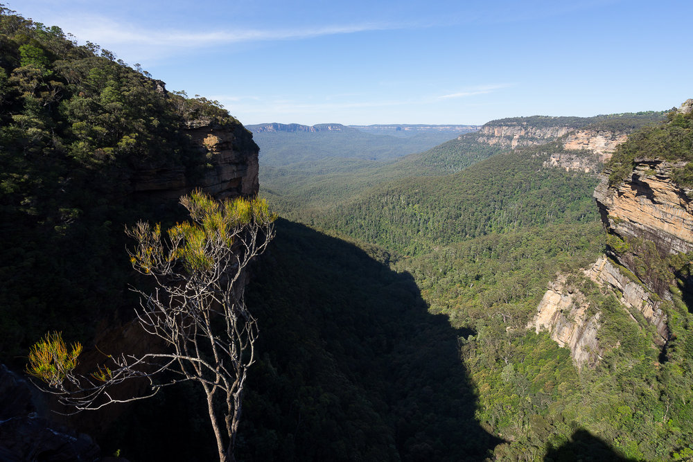Wentworth Falls, NSW