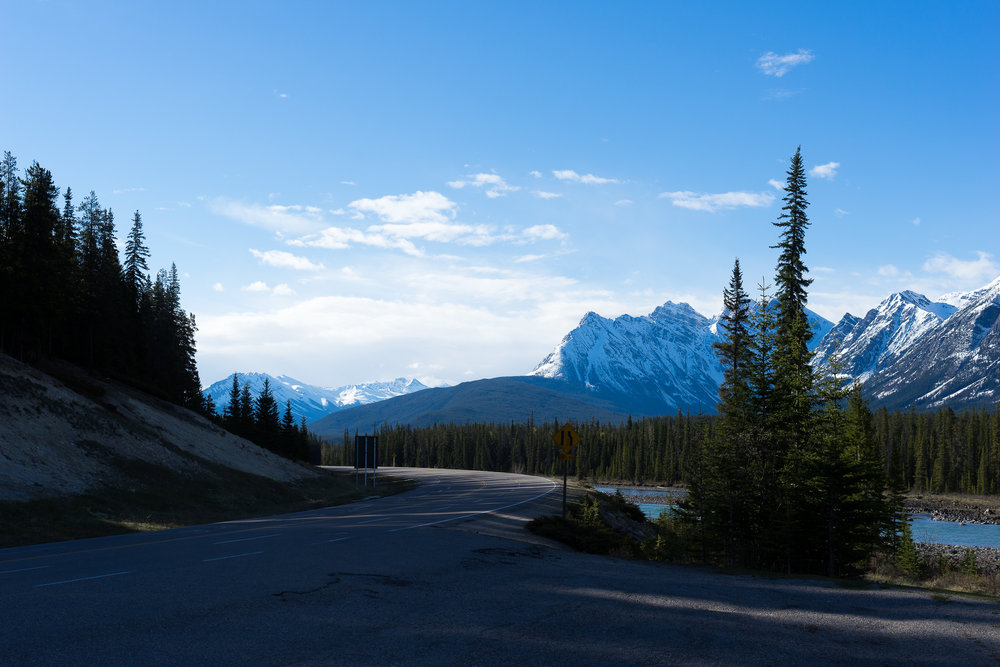 Icefield Parkway between Jasper and Saskatchewan River Crossing, Ab.