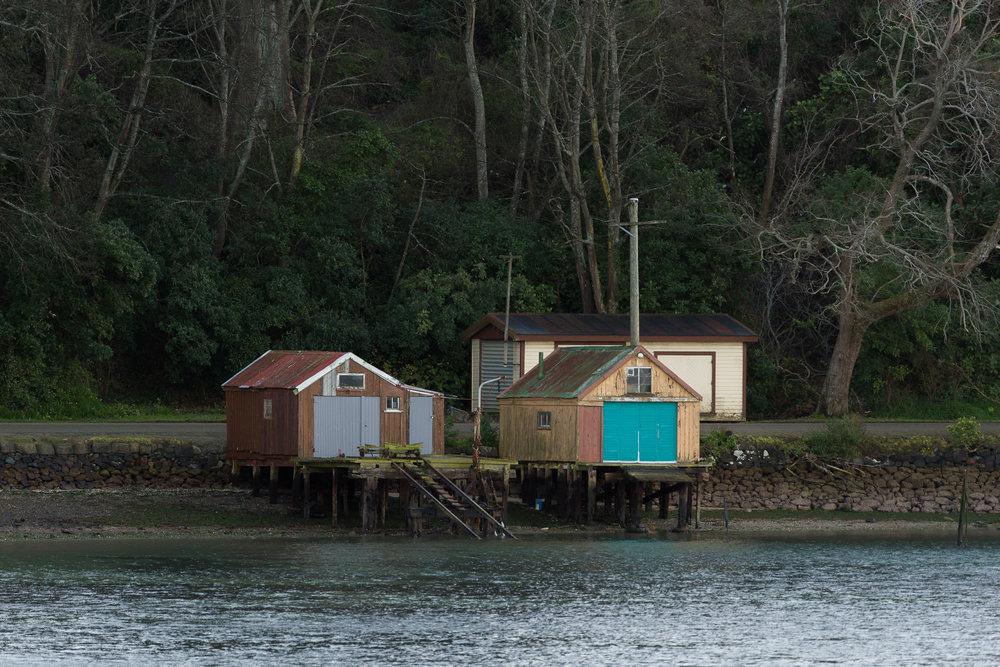 Boat Houses, near Dunedin
