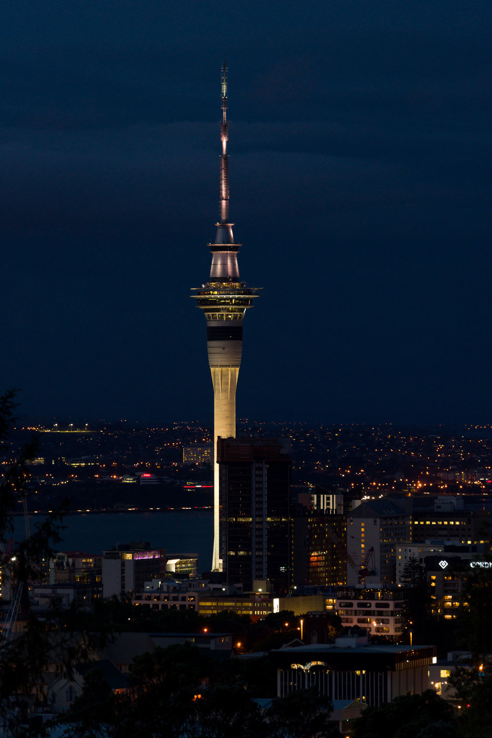 Auckland Sky Tower from Mount Eden