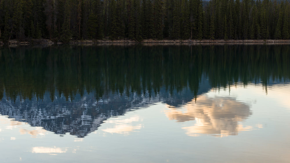 Reflections in Beauvert Lake, Jasper Alberta