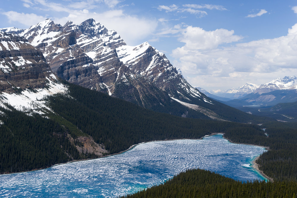 Picturesque Peyto Lake, in the Canadian Rocky Mountains.