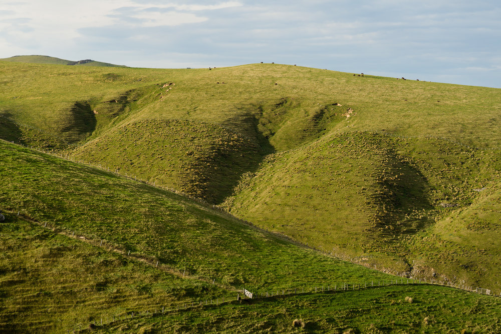 South Akaroa Head