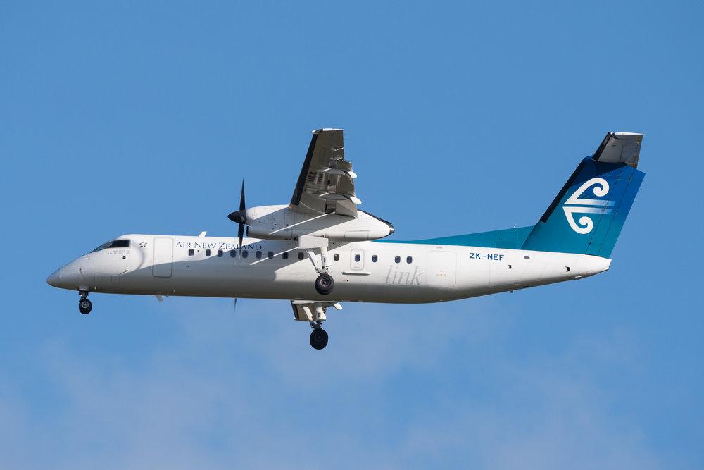 Air Nelson Q300