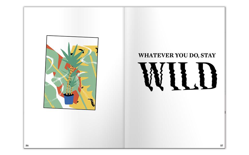 170805-Miro-Denck-Wilderness-17-960px.jpg