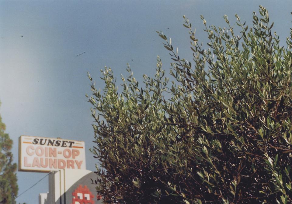 171024-Miro-Denck-Travel-18-960px Kopie.jpg