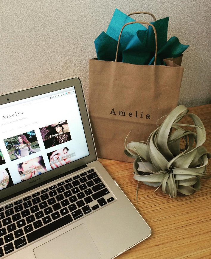 AmeliaGiftBagWithComputerImage.jpg