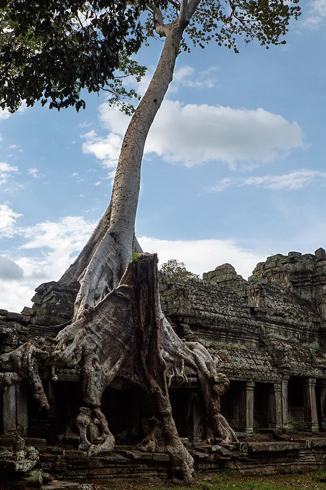 141226-Angkor_053.jpg