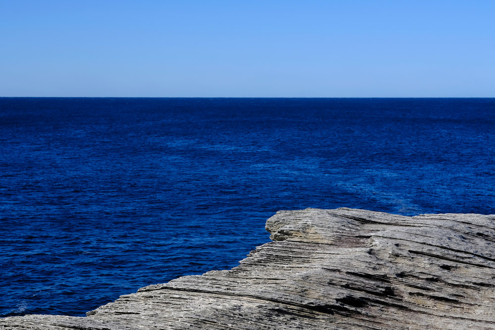 Pretty-Blues-in-La-Perouse.jpg