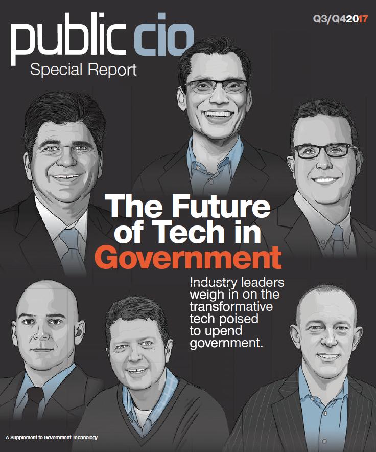 PublicCIOcover.jpg