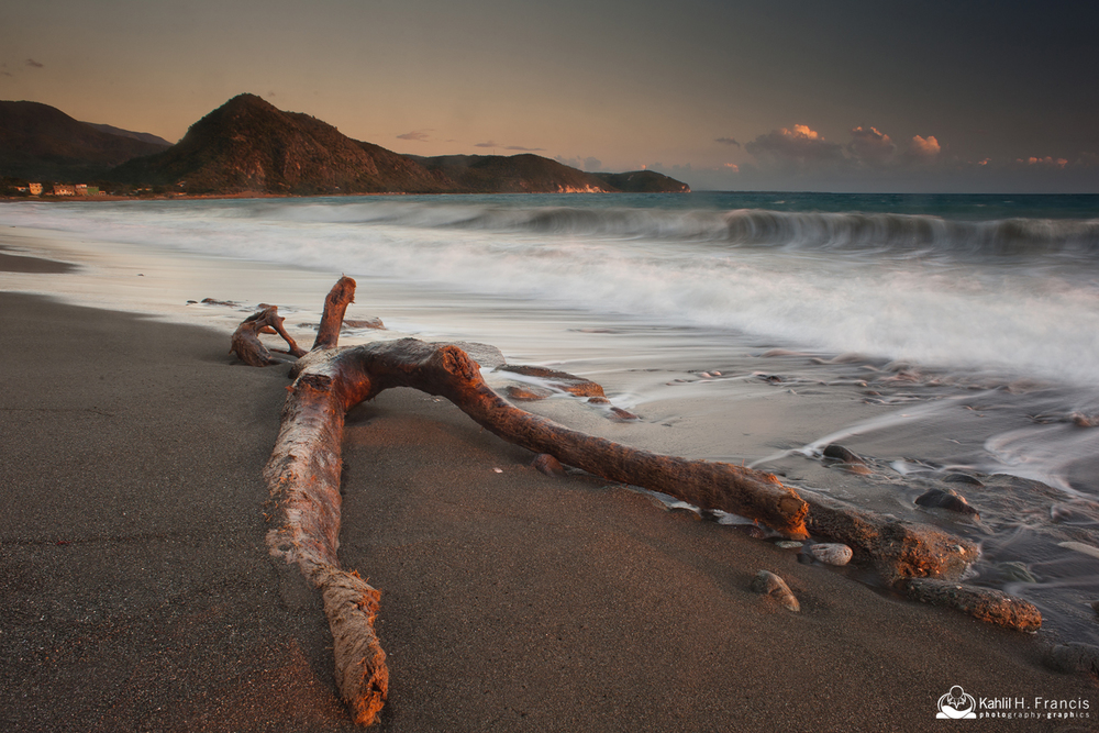 Beached Wood - Sugarloaf Hill