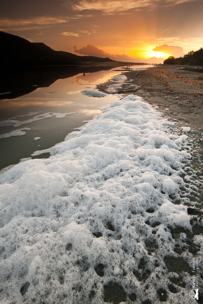 Foam - Yallahs Pond at Sunrise - St. Thomas